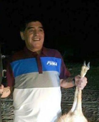 Animal Lovers Furious Diego Maradona Shoots IUCN Red List Antelope