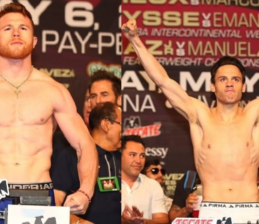 Who Is The Better Fighter: Canelo or Chavez Jr Stats