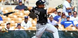 White Sox Melky Cabrera Hits Game Winning RBI