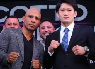 Miguel Cotto vs Yoshihiro Kamegai Fight Confirmed